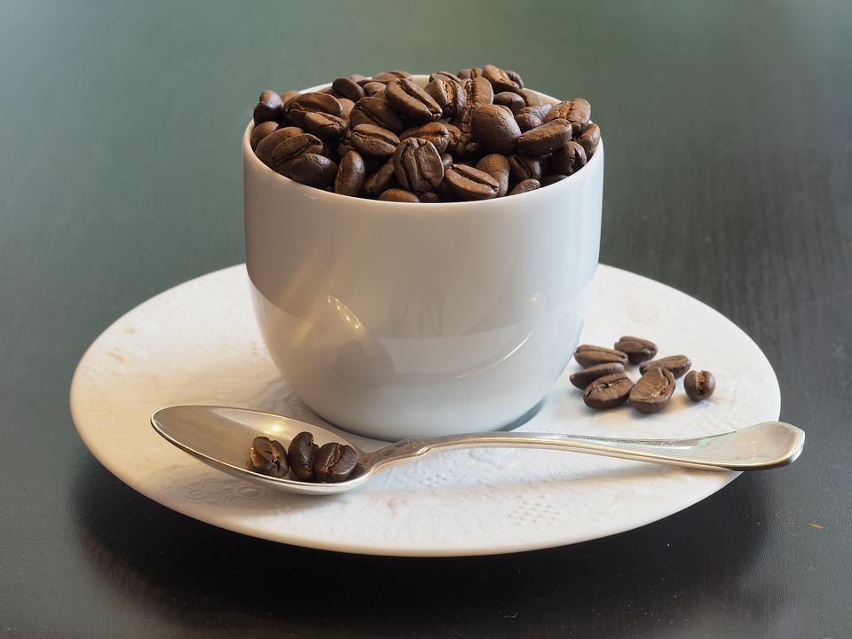 Makan biji kopinya nah
